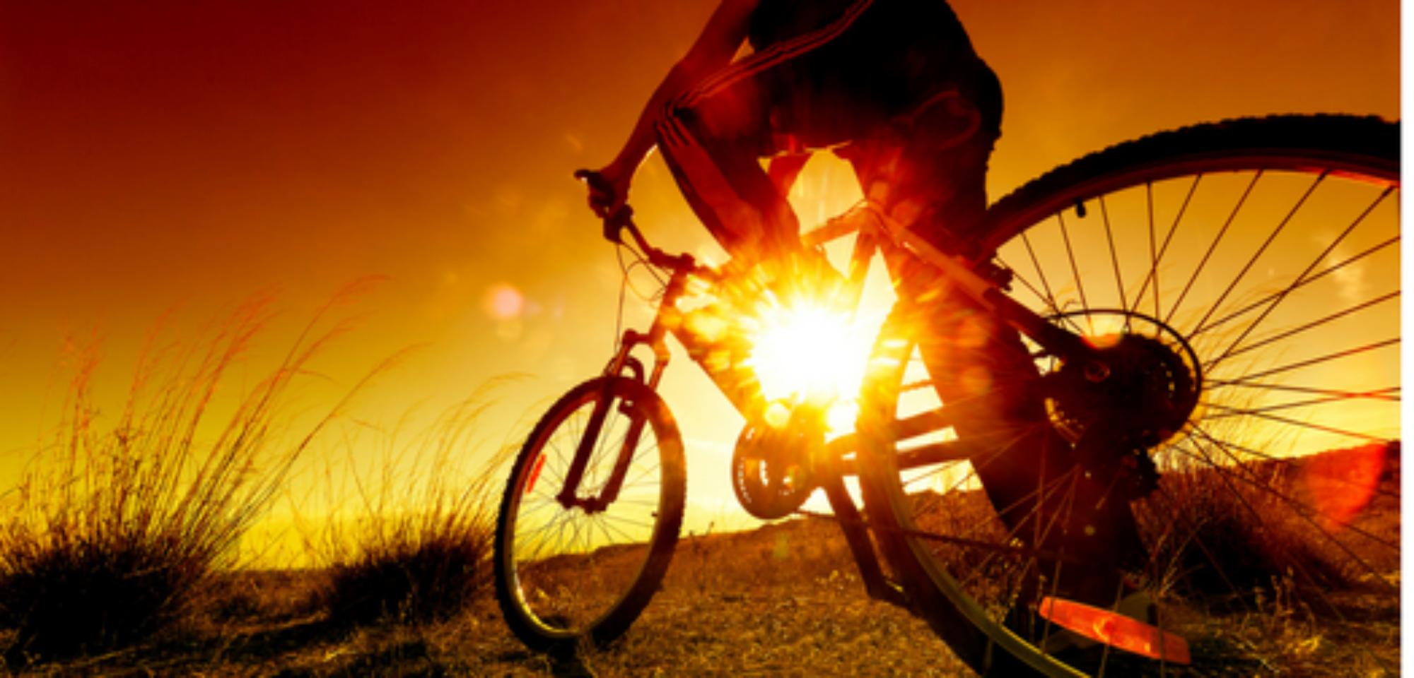 Fahrrad Behncke Dömitz